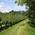 spuitzone boomgaarden