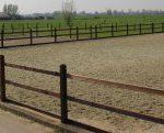 paarden buitengebied
