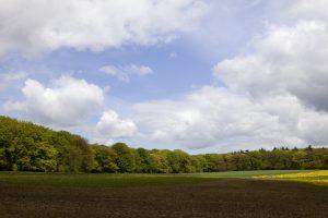 voormalige agrarische bedrijfswoning
